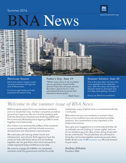 BNA Summer Newsletter icon