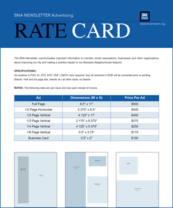 BNA Newsletter rate card icon